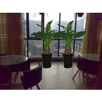 郑州园林绿化公司/郑州园林绿化/景观绿化设计