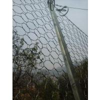 rx025被动防护钢丝绳网@sns柔性防护网网@被动环形边坡防护网生产厂家