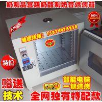 奶制品宫廷奶酪制奶昔烤箱 农工科医卫电热干燥箱烘箱烘焙烘干机