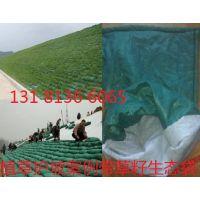 供应生态袋抗老化抗紫外线性能强,合肥生态袋,河道边坡绿化,安徽生态袋直销