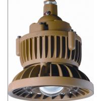 BT110系列防爆高效节能灯