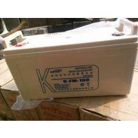 科士达蓄电池12V100AH/20HR