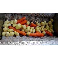 希源TD12型土豆去皮清洗机