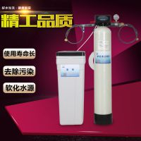 家用软水机1t井水地下水过滤器除水垢处理设备锅炉软化水设备化器