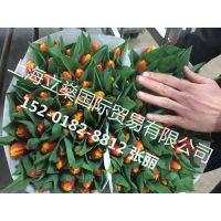上海进口肯尼亚鲜花代理报关