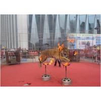 广州马戏团表演|广东马戏团表演