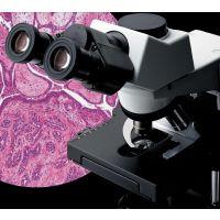 日本进口奥林巴斯生物显微镜CX31代理商