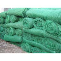 新疆工艺独特方便好用植草护坡网垫/三维土工网垫持续热卖