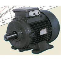 德国原装GAMAK电机GM2E160M一手直供原装正品