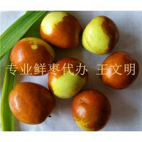 山东鲜枣产地价格 鲜枣供应商