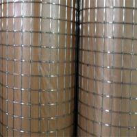专业供应304不锈钢电焊网 鸡鸭养殖围网