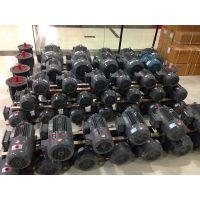 厂家销售上海德东电机厂 YE2 0.75KW高效三相异步电机4极