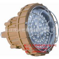 防爆LED灯 专业生产LED防爆灯具30~50W LED防爆灯