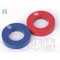 29030 环形磁铁 小学幼儿园科学分组实验器材