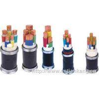 供应齐鲁品牌塑料绝缘聚氯乙烯护套低压2*10平方电力电缆
