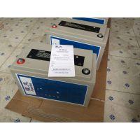 艾诺斯Enersys霍克蓄电池2T150纯进口