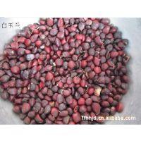 花似莲花的观赏苗木:玉兰种子、广玉兰种子、紫玉兰种子(园林)