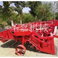 甘肃柴胡收获机哪家好 新乡黄芪种植机生产厂家 圣嘉全自动板蓝根起挖机视频