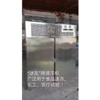 冰友推车式海鲜食品速冻机 双门速冻柜 超低温冷冻柜
