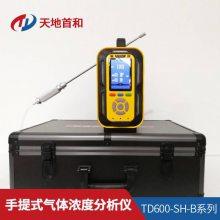 内置泵吸式乙硼烷分析仪TD6000-SH-B2H6气体检测仪流量800毫升/分钟
