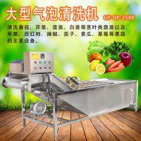 赣云牌大型洗菜机 自动水果蔬菜清洗机 气泡清洗机