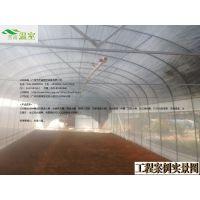 供应佛冈蔬菜大棚FC-023、蔬菜大棚厂家、芳诚温室--18988967562
