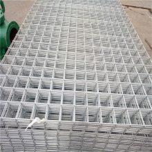 焊接网片 冷镀锌电焊网 青岛电焊网