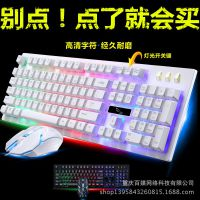 追光豹G20有线usb游戏悬浮机械手感键盘鼠标套装发光键鼠套件