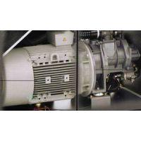 空压机电机