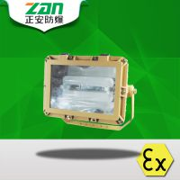SBD1109免维护节能防爆泛光灯-正安防爆
