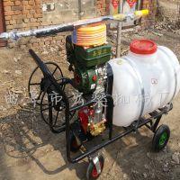四轮手推式高压泵喷雾器 宏燊草坪喷雾机