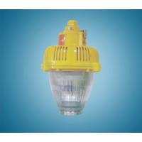 BPC8760-L45 LED防爆平台灯
