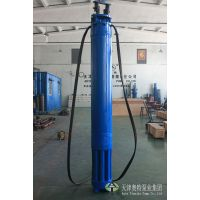 10KV1152高压井用潜水电动机供应