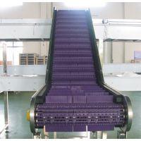 传进牌爬坡提升塑料网带输送线,订做爬坡网带提升线,600系列