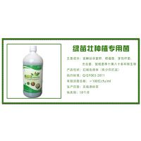 百益宝厂家直销绿苗壮em菌在辣椒上的作用和使用方法