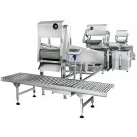昊鹰HYTW-307连续式根茎类洗菜线 全自动连续式根茎类洗菜机