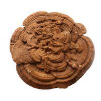 花式嫁接超大灵芝 多层灵芝盆景艺术品 带粉整枝灵芝 直径50-60cm