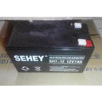 西力蓄电池12v7ahUPS蓄电池