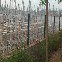 旺来绿化护栏 草坪护栏网厂家 园林绿化用网