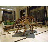 仿真恐龙化石骨架|恐龙骨架模型