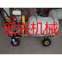 手推式园林喷雾机 背负式喷雾机 拉管式喷雾器