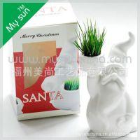 迷你植物  DIY桌面种植  青草娃娃 小白人 创意礼品 促销礼品