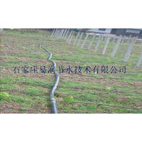 河北农业大田滴灌|灌溉用品安装