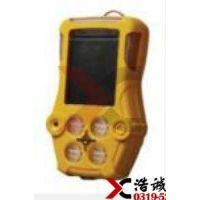 四川浩诚固定式氨气检测仪氯化氢报警器PGM-1860测量范围