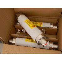 厂家直销XRNT1-12/100A、高压电器 熔断器、熔断器 高压限流熔断器