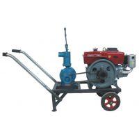 供应高扬程手压式喷灌离心泵R180柴油机水泵机组 皮带轮180泵