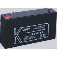 科士达6V1.2AH蓄电池科士达蓄电池3-FM-1.2AHkstar精密车载蓄电池