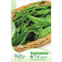 我要发芽 蔬菜种子 荷兰豆 法国大荚 扁豆 豌豆 高营养 10粒/包