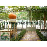 绿浦生态观光温室  展示温室 会议厅 阳光餐厅