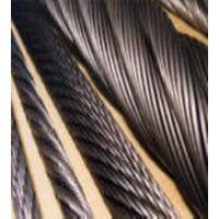 抗拉【浇铸310S细不锈钢钢丝绳】宝钢不锈钢丝绳304卸扣服务优质 河北承德